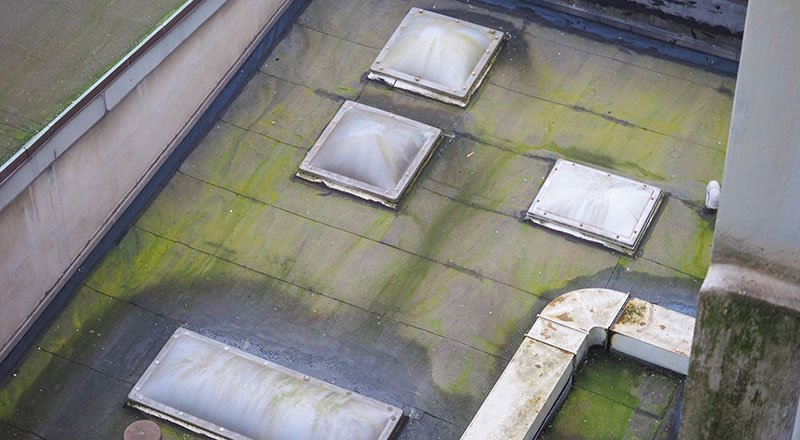 Signs of end of roof life