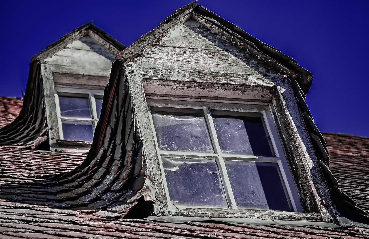 (A-One) The History Of Roofing